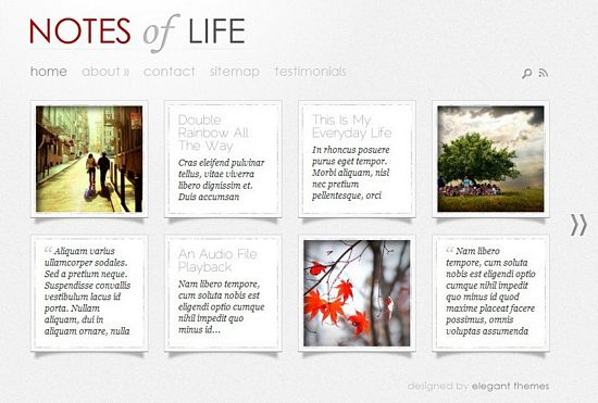 dailynotes-wordpress-theme